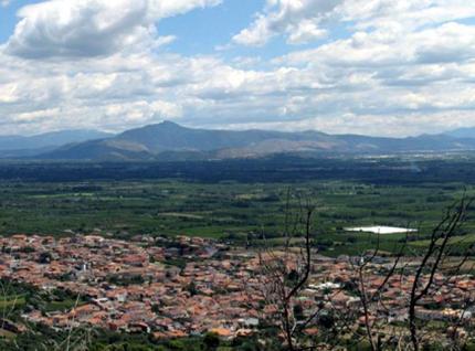 Falciano-del-Massico.jpg.crop_display.jpg