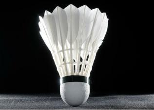badminton_2.jpg.crop_display.jpg