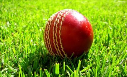 cricket_ball_0_0_0_0_0_0.jpg