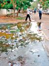 sewer.jpg.crop_display.jpg